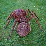 Rrzeźba pająka zciemnobrązowej wikliny ustawiona natrawniku